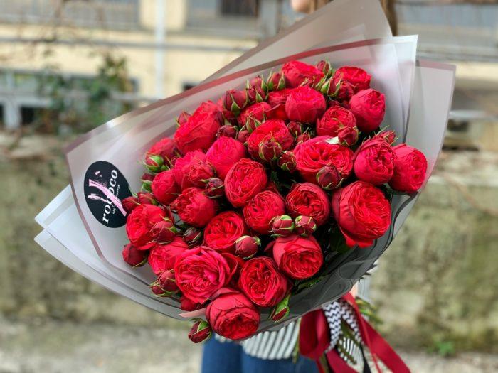 Розы ред пиано Сочи