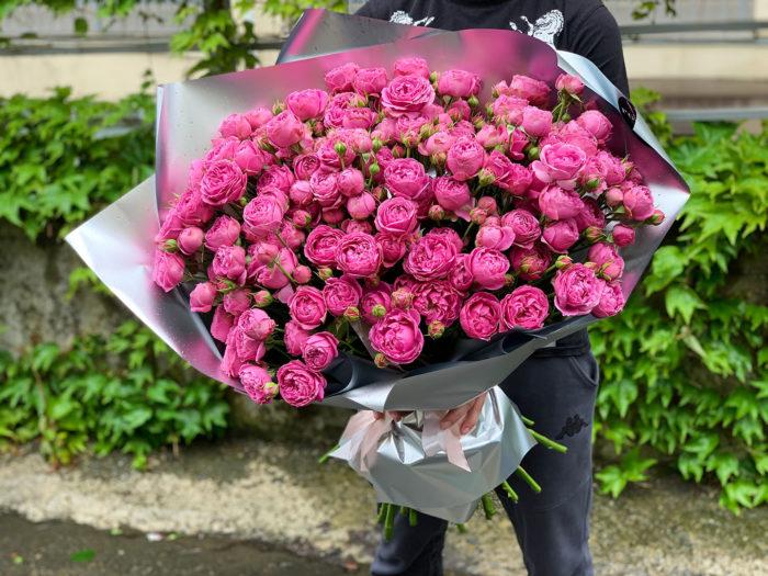 Кустовые пионовидные розы Misty Bubbles