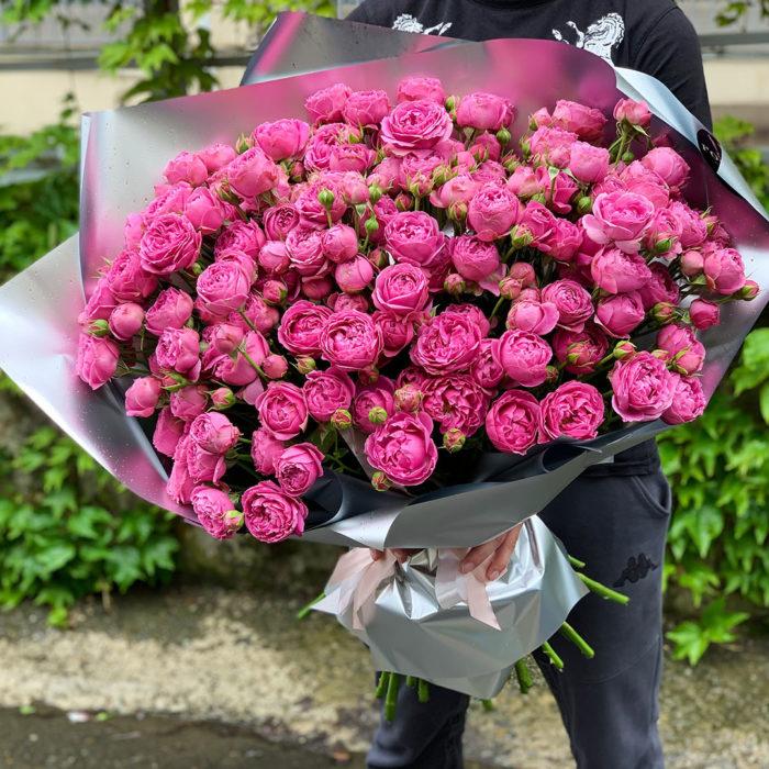 Пионовидные розы Misty Bubbles