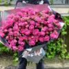 Кустовые пионовидные розы Misty Bubbles В Сочи и Адлере